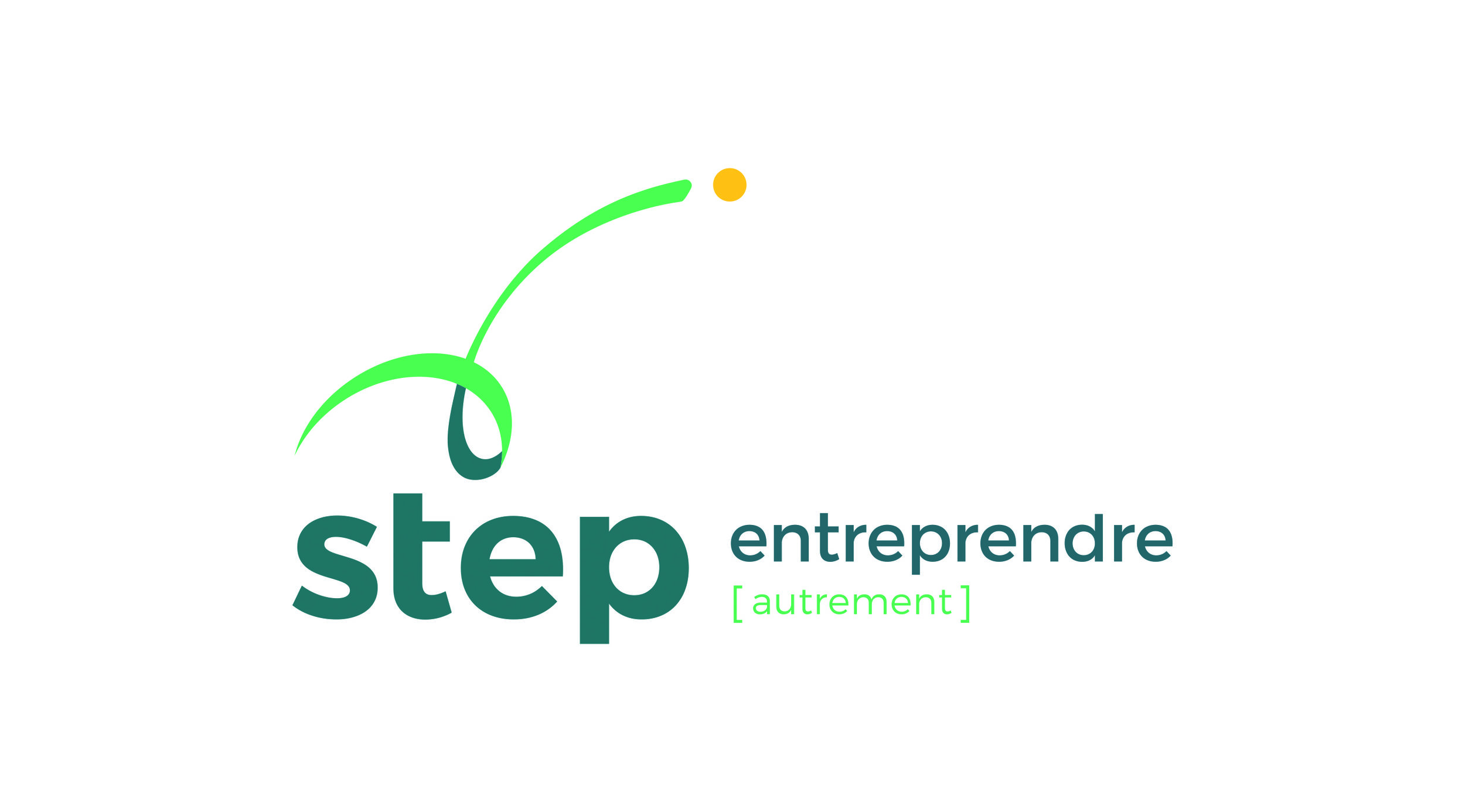 Logo Step group